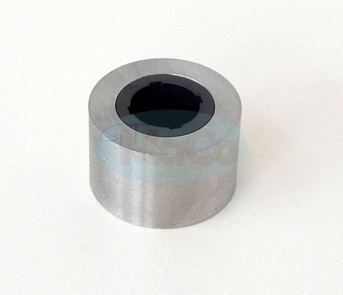 Back Up Ring, Chamfered for Pump P2040V